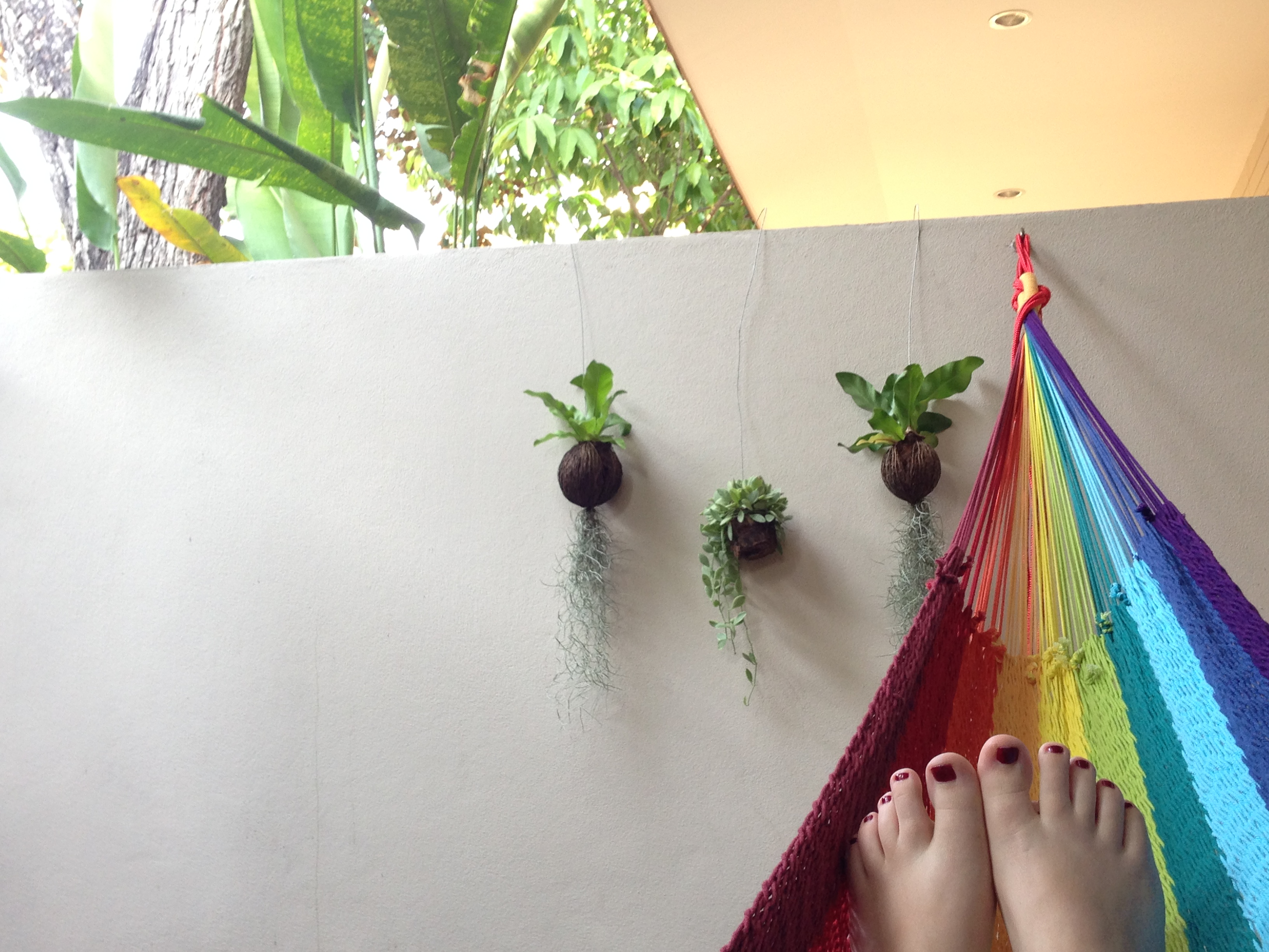 My Chiang Mai Daily Life: New House, Work in a Handful of Countries, Christmas, New Year and a Hammock
