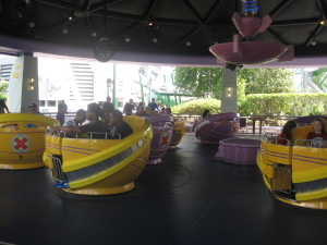 Storm Force Accelatron (or the teacups ride)